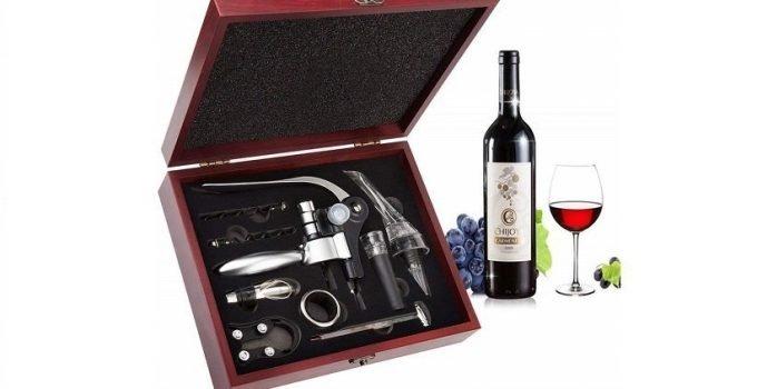 Kit da Sommelier: Scopri Quello Che Non Dovrebbe Mai Mancare a un Professionista del Vino